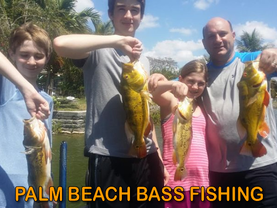 Orlando beaches best beach day trips from orlando and for Palm beach fishing